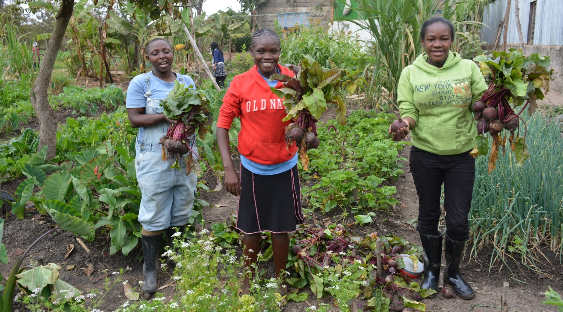Empowering women farmers by GBIACK